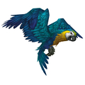 Greatwing Macaw