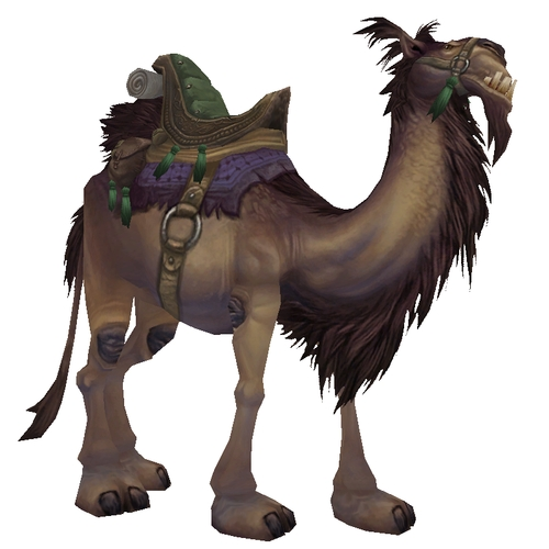 Brown Riding Camel