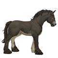 Unsaddled Dark Brown Horse w/ White Belly