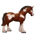 Unsaddled Brown & White Horse w/ Stockings