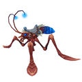 Azure Water Strider